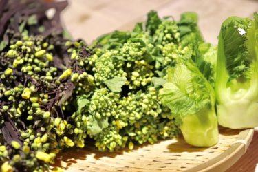 春野菜のデトックス効果とは