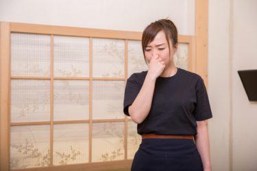 Googleの検索候補に「栃木 郷土料理 ゲロ」と出てくるのはなんなのか。 栃木の郷土料理を栄養士の僕がご紹介